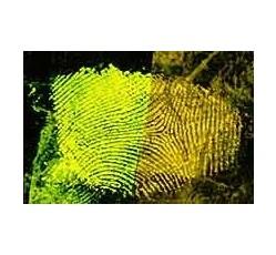 obrázek Rhodamine 6G, roztok