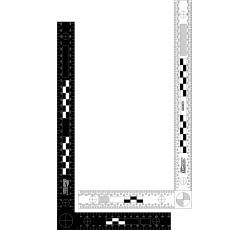 obrázek Měřítko plast. oboustr. trasolog., černobílé, 30x15 cm