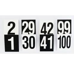 obrázek Čísla plast. 1-100 (10x16 cm) oboustranná v sáčku