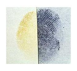 obrázek Benzoflavon / jód - fixativ a zvýrazňovač